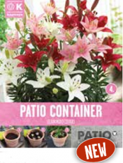 Смесь лилии карликовые белые, розовые и красные 5шт